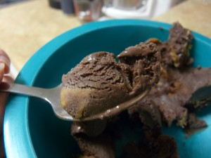 Chocolate and Salty PB Ice Cream