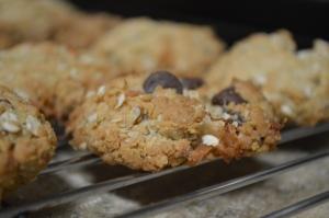 Chocolate Coconut Oatmeal Cookies 5