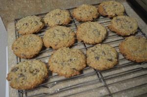 Choco-Chip Oatmeal Cookies