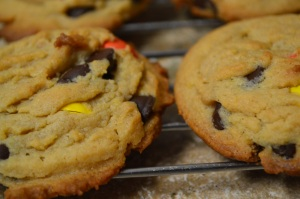 Peanut Butter Chocolate Chip Pudding Cookies 3